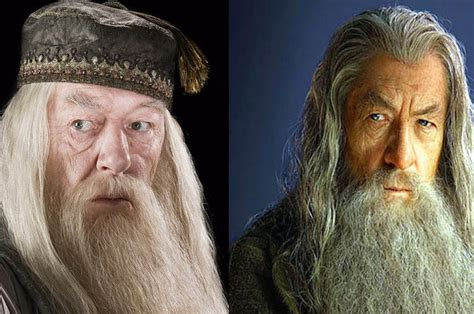 Are You More Dumbledore Or Gandalf?