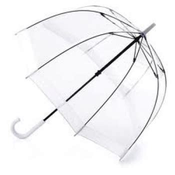 Clear Dome Umbrella - head & shoulders above the rest