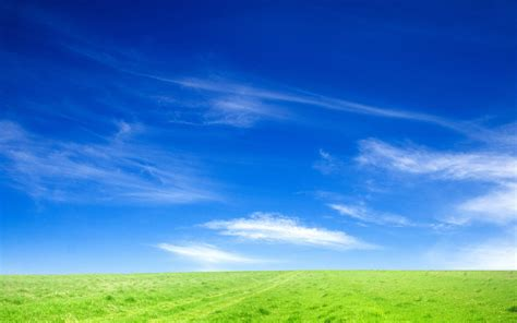 Blue Sky and Green Grass Wallpapers | HD Wallpapers | ID